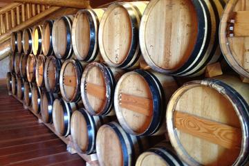 Château Plaisance Winery