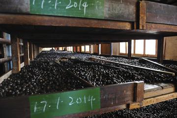 Gouyave Nutmeg Station