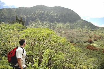 Top Hiking Trails in Oahu