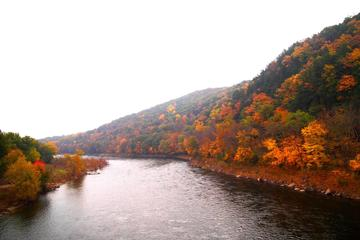 Where to See Fall Foliage in New York