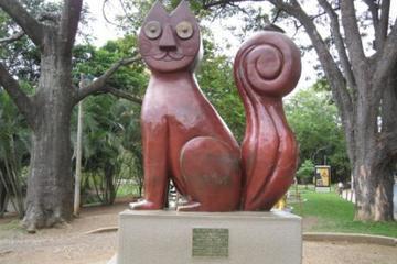 Cat Park (Parque del Gato)