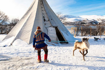 Ways to Experience Sami Culture in Tromso
