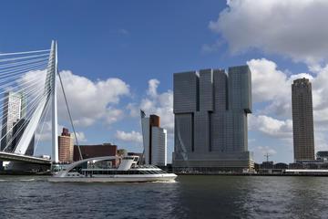 Rotterdam Harbor Cruises