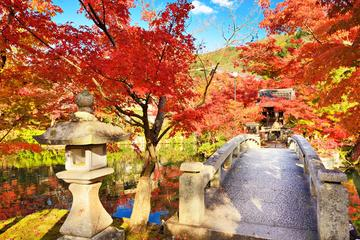 Eikan-do (Zenrin-ji Temple)