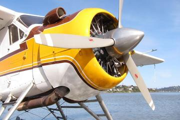 San Francisco Seaplane Tours