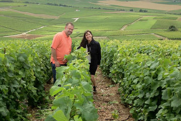 Exploring the Champagne Region