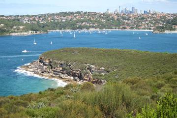 Sydney Nature Walks