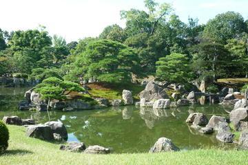 Finding Zen: Kyoto's Best Gardens