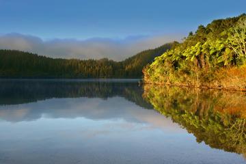 Lake Tikitapu (Blue Lake)