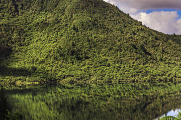 Lake Rotokakahi (Green Lake)