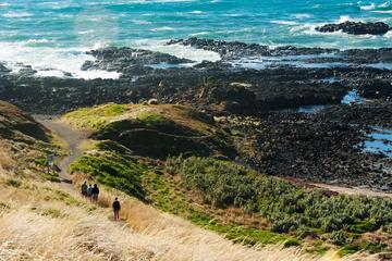 Exploring Phillip Island's Coastlines