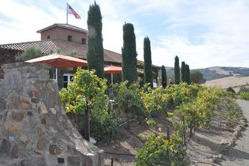 Viansa Winery