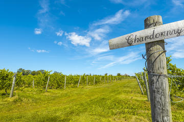 Blomidon Estate Winery, Nova Scotia