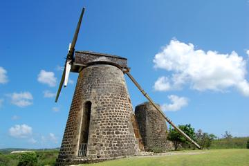 Betty's Hope Sugar Plantation