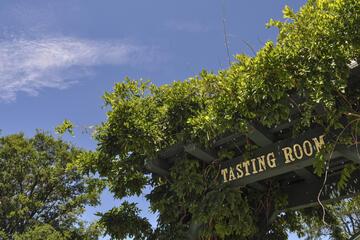 El Dorado Wine Region