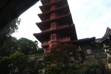 Chinese and Japanese Towers