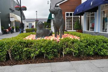 Kildare Village Shopping