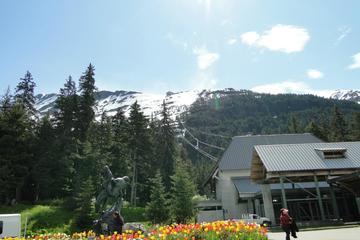 Mt Alyeska