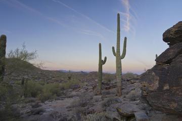South Mountain Park, Phoenix Tours, Travel & Activities