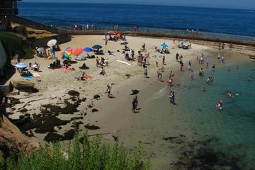 Children's Pool Beach