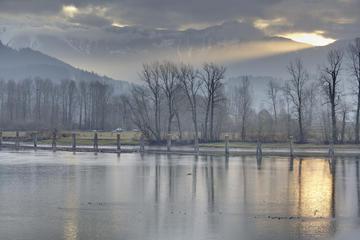 Harrison River