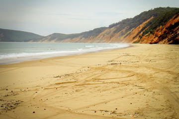 Fraser Island Tours from Noosa and Rainbow Beach