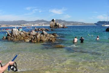 9fed85272a30d The Top 10 Things To Do & Attractions in Los Cabos 2019
