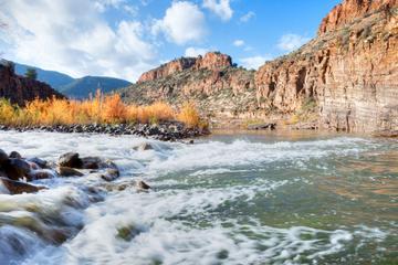 Salt River, Arizona