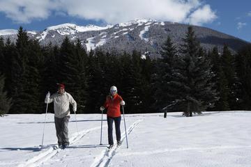 Winter Adventures in Squamish