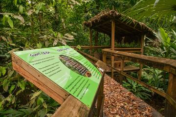 Cinco Ceibas Rainforest Reserve and Adventure Park, Costa Rica