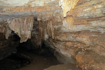 Vjetrenica Cave