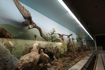 Goulandris Natural History Museum