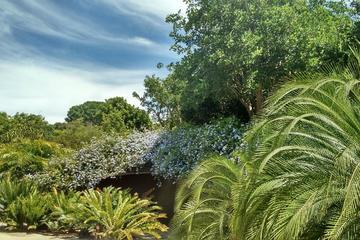 Jardin botanique de barcelone activit s 2018 viator for Jardin botanique barcelone