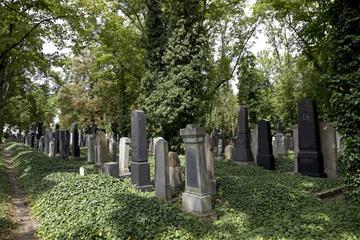 Novo Cemitério Judeu de Praga