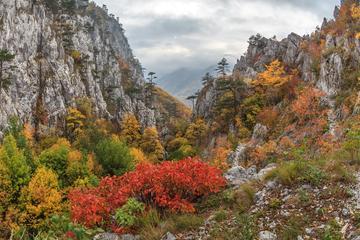 Domogled-Valea Cernei National Park