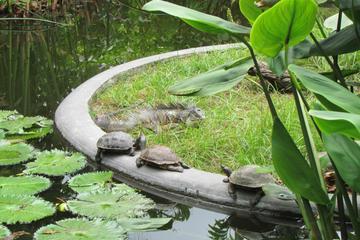 La Laguna Botanical Garden