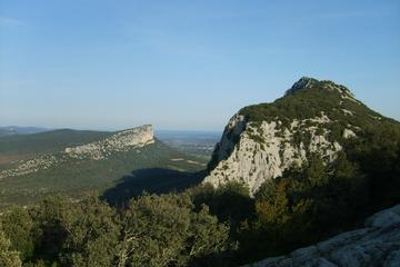 Pic St-Loup, Languedoc-Roussillon, France