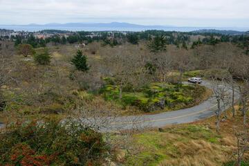 Mt Tolmie Park