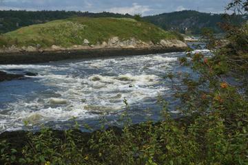 Reversing Falls, New Brunswick