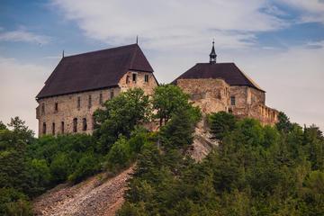 Tocnik Castle