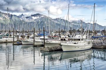 Seward Small Boat Harbor