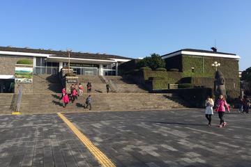 Jeju Folklore & Natural History Museum