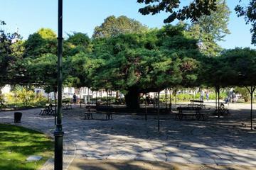Principe Real Garden (Jardim do Principe Real)