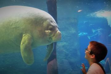 The Best Dallas World Aquarium Tours Trips Tickets