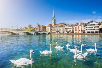 Things to Do in Zurich This Summer