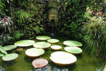 Jardim Botânico La Mortella