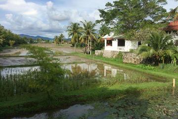 Rice Garden Museum (Laman Padi Langkawi)