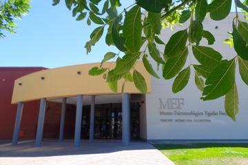Museum of Paleontology Egidio Feruglio