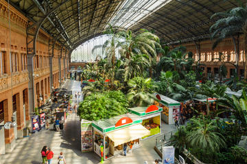 Atocha Train Station (Estacion de Atocha)
