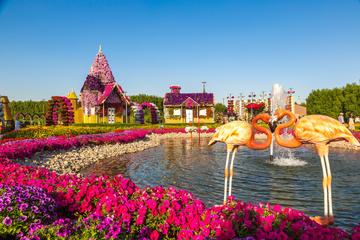 The 5 Best Dubai Miracle Garden Tours Amp Tickets 2018